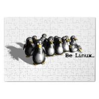 Magnetna puzla Linux