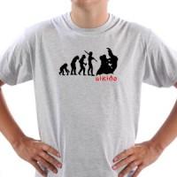 Aikido Evolucija