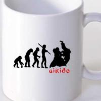 Šolja Aikido Evolucija