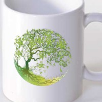 Šolja Drvo